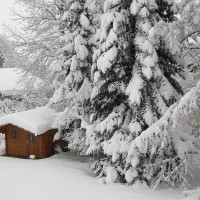 winter-948952_960_720